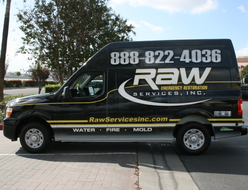 Raw Services Inc
