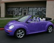 purple car wrap